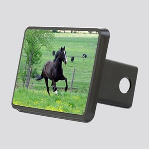 spring_walker_panel Rectangular Hitch Cover