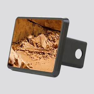Kiva in Lower Grand Gulch Rectangular Hitch Cover