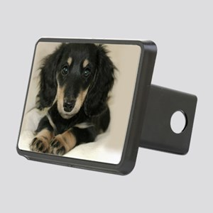 long hair black doxie 16x1 Rectangular Hitch Cover