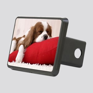 Spaniel greeting Rectangular Hitch Cover