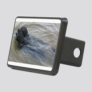 2 flat coated retrievers swimming Hitch Cover