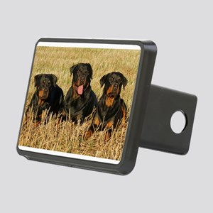 LS rottweiler group Hitch Cover