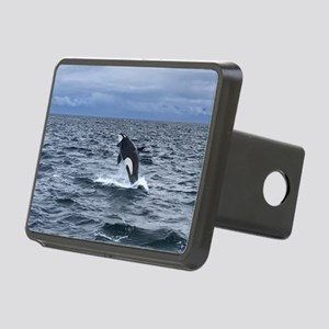 Leaping Orca Whale Hitch Cover