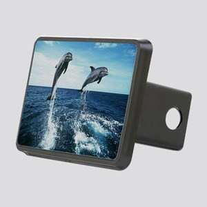 Twin Dolphins Rectangular Hitch Cover