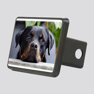 LS rottweiler second Hitch Cover