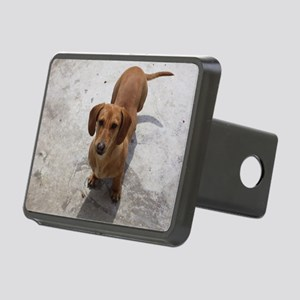 Dachshund full Hitch Cover