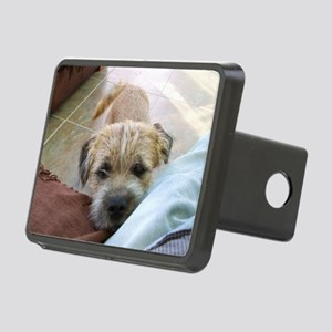 border terrier begging Hitch Cover