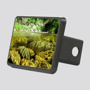 Dwarf Dolly Varden Rectangular Hitch Cover