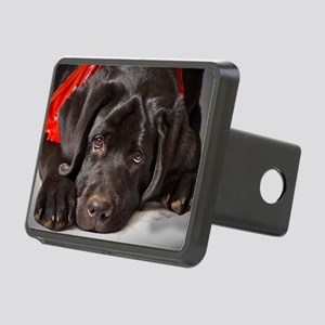 It's Been A Long Day Rectangular Hitch Cover