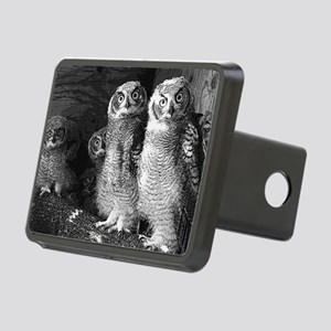 peek a boo Rectangular Hitch Cover