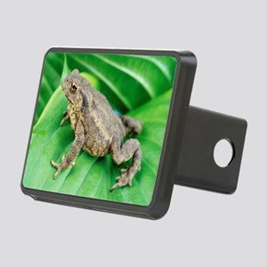 Common toad Rectangular Hitch Cover