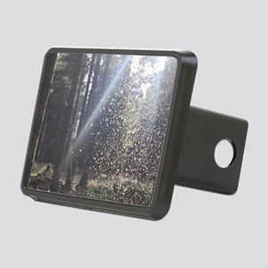 Dust in Rays Rectangular Hitch Cover
