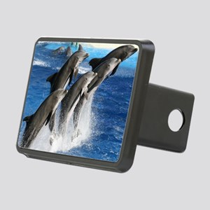 dolphin6 Rectangular Hitch Cover