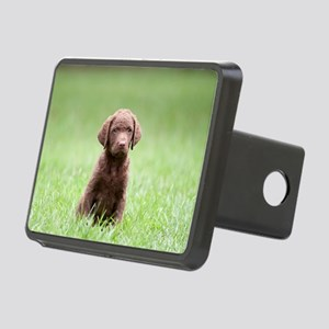 Chesapeake Bay Retriever P Rectangular Hitch Cover