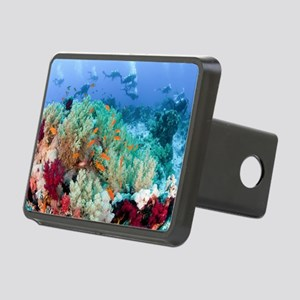 Coral Reef Red Sea, Ras Mo Rectangular Hitch Cover