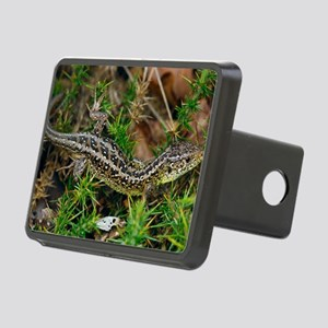 Male sand lizard Rectangular Hitch Cover