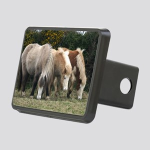 coloursBIG Rectangular Hitch Cover