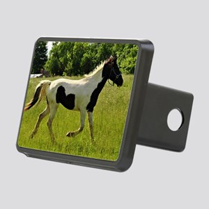 Spotted Horse Rectangular Hitch Cover