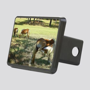 Big Time Itch! Rectangular Hitch Cover
