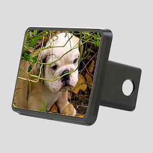 English Bulldog Puppy Rectangular Hitch Cover