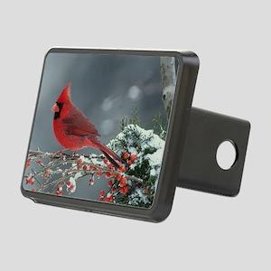 Cardinal  Rectangular Hitch Cover