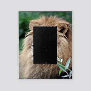Lion010 Picture Frame