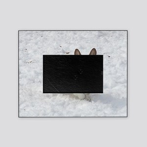 Red and White Corgi in the Snow Picture Frame