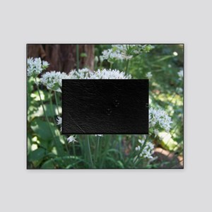 Fall Chive Blossoms Picture Frame