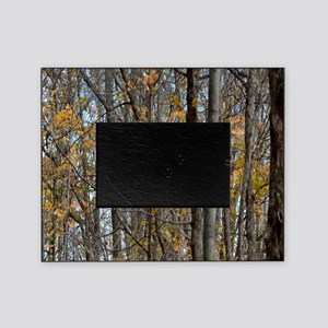forest trees Camo Camouflage  Picture Frame