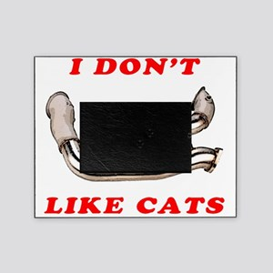 I Don't Like Cats (Racing) Picture Frame