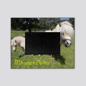 Miniature Horse Picture Frames - CafePress