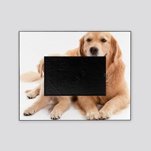 Kozzi-Dog-Buddies-7240x5433 Picture Frame