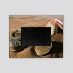 Olduwan stone tools Picture Frame