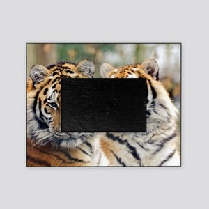 Tigers Picture Frame