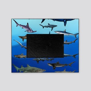 Shark Gathering Picture Frame