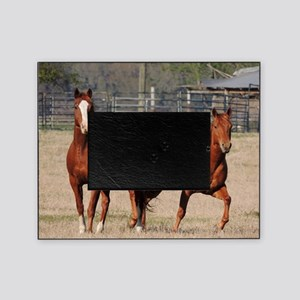 Happy-Horses-Hoofing-It Picture Frame