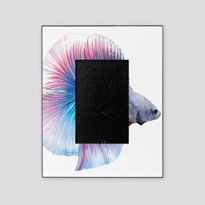 Double Tail Betta Picture Frame