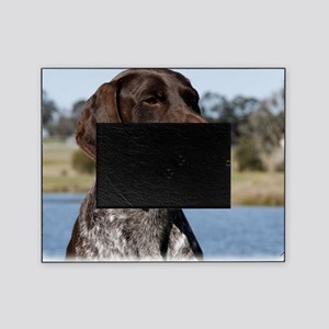 German Shorthaired Pointer 9Y832D-02 Picture Frame