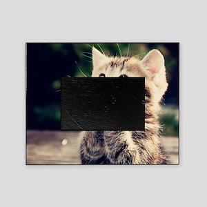 Cat Praying Picture Frame