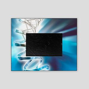DNA molecule, artwork Picture Frame