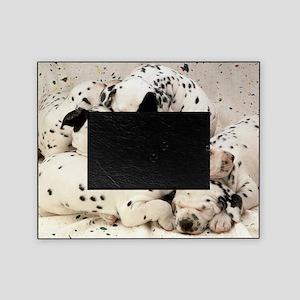 Dalmation sm fr pan print Picture Frame