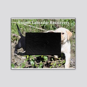 Eromit- Lab puppies Picture Frame