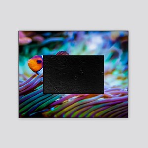 Clownfish Picture Frame
