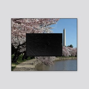 Peal bloom cherry blossom frames Was Picture Frame