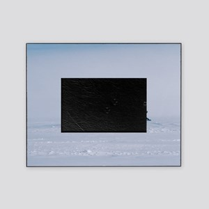 Antarctic field camp Picture Frame