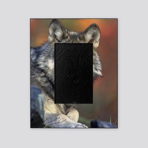 Wolf 024 Picture Frame