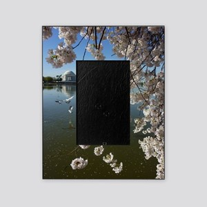 Seagulls Fly Under Peal bloom cherry Picture Frame
