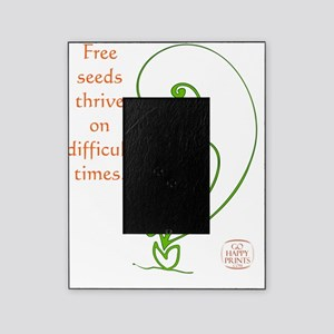 Free seeds thrive on difficult times Picture Frame
