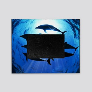 Porpoises in the Ocean with Sun Rays Picture Frame