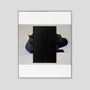 Black Cat! Picture Frame